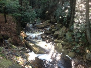 Water streams of Hickory Run State Park, PA